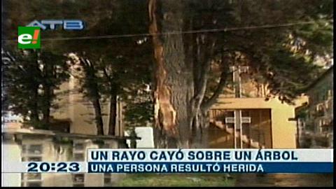La Paz: Un rayó deja un herido y daña un árbol en Cementerio General