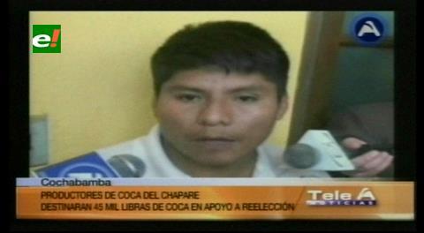 Cocaleros del Chapare donarán 45 mil libras de coca para la campaña de Evo