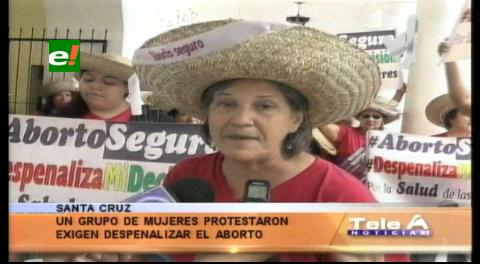 Protestaron pidiendo la despenalización del aborto
