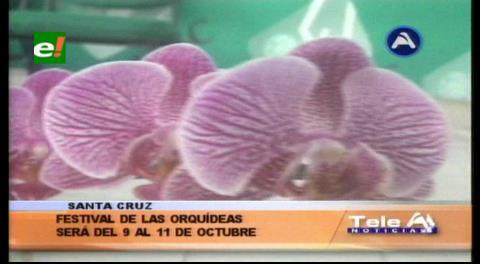 Del 9 al 11 de octubre: Festival de la Orquídea de Concepción