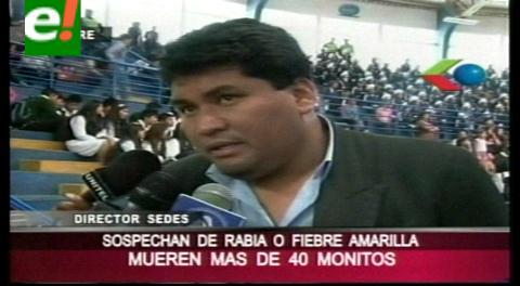 Monteagudo: Mueren más de 20 monos en Chapi Mayu, analizan las causas