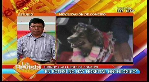 COMCIPO estima que el No ganará con más del 50% en Potosí