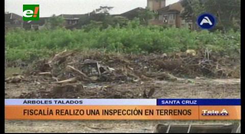 Fiscalía inspeccionó el terreno donde hubo tala