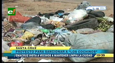 """Emacruz analiza proyecto para sancionar a """"los cochinos"""""""