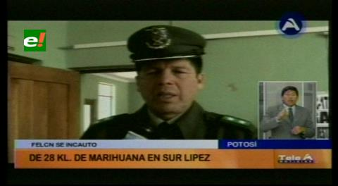 Aprehenden a una persona con más de 28 kilos de marihuana en la provincia Sud Lípez de Potosí