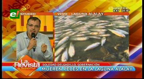 """Autoridades creen que la laguna Alalay """"es una vía de extinción"""""""