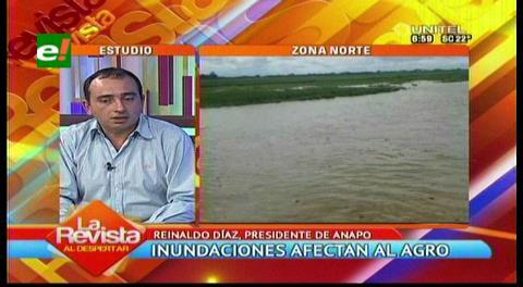 Productores de soya en emergencia por inundaciones en tres municipios