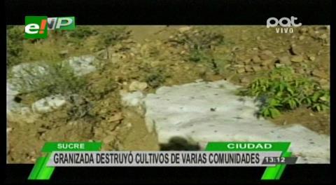 Chuquisaca: Granizo destruye cultivos de unas 9 comunidades