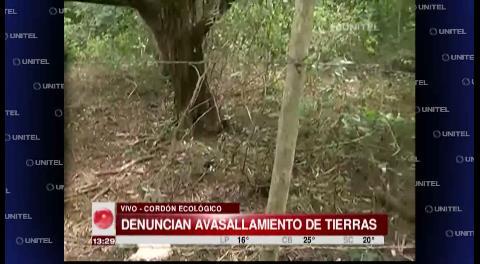 Vecinos del cordón ecológico denuncian avasallamiento de tierras