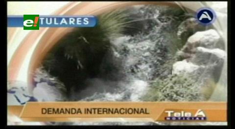 Titulares de TV: Chile advierte con pedir medidas precautorias a La Haya si Bolivia afecta el caudal del Silala