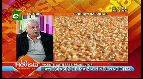 Escasez de maíz golpea a los avicultores