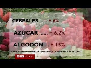 Los precios de los alimentos alcanzan máximos históricos