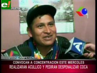 """Cocaleros se preparan para la jornada de """"pijcheo"""""""