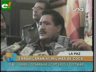 Gobierno se propone erradicar más de 8 mil hectáreas de coca