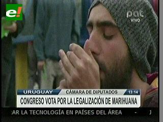 Congreso de Uruguay decide sobre la legalización de la marihuana