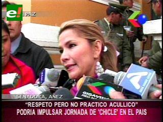 """Senadora Añez: """"Podríamos proponer una jornada del chicle"""""""