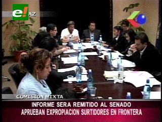 Comision mixta del Senado aprobó la expropiación de los surtidores en las fronteras