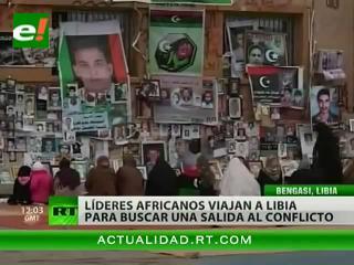 Cinco líderes africanos buscan facilitar el diálogo entre Gaddafi y los rebeldes en Libia