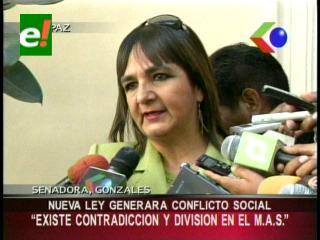 """Senadora González: """"Ley de Amnistía puso al descubierto la división en el MAS"""""""
