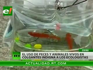 El maltrato de animales en China provoca indignación de ecologistas