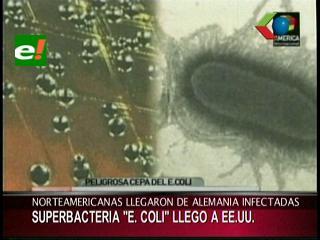 La peligrosa bacteria E.coli llegó a EEUU