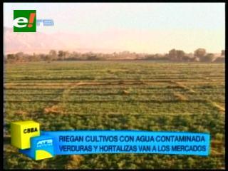 Cochabamba: Cultivos agrícolas son regados con aguas contaminadas del río Rocha