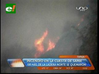Tarija: Incendio en la Cuesta del Sama, 100 hectáreas de la ladera norte se quemaron