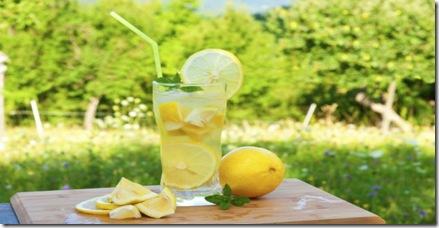 dieta-de-la-limonada 1