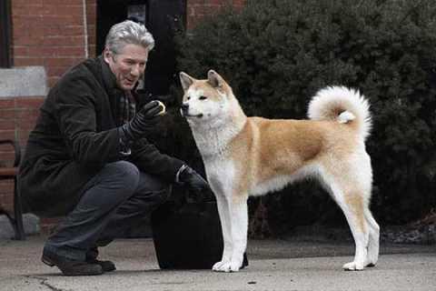 Tokio celebra con una exposición el 90 aniversario del mítico perro 'Hachiko'