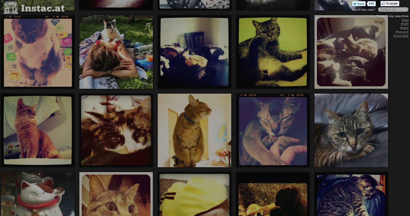 Instagram Instac.at