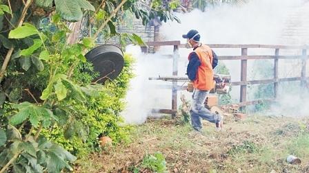 Envían médicos al trópico de Cochabamba para luchar contra el dengue