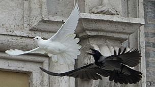 Ataque a palomas de la paz