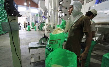 Gobierno-preve-importar-arroz-dentro-de-cuatro-meses-