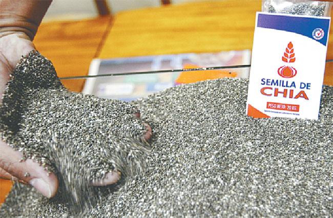 Semexa entra a la producción de semilla de chía de alta calidad