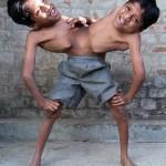 Twins_01_1955266a