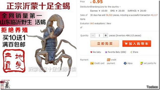 taobao__live_scorpions