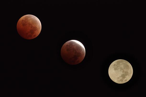 Diferentes fases de un eclipse lunar. Angel DiBilio | Shutterstock