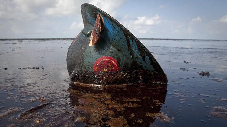 Catastróficas consecuencias del derrame de petróleo en el golfo de México
