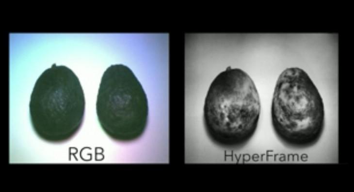 Algunos de los ejemplos mostrados en phys.org