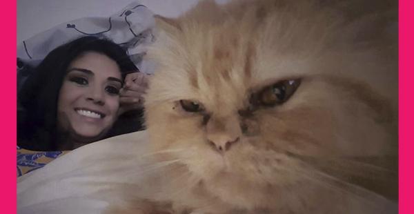 Garfield, gato de Anabel Angus