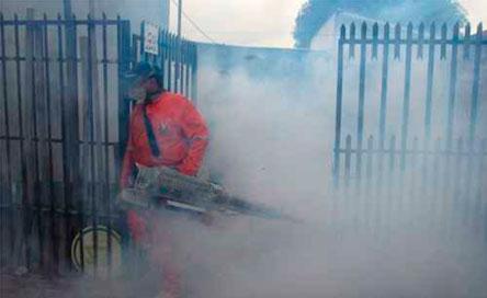 Más del 50% de hogares cruceños tienen criaderos de mosquitos