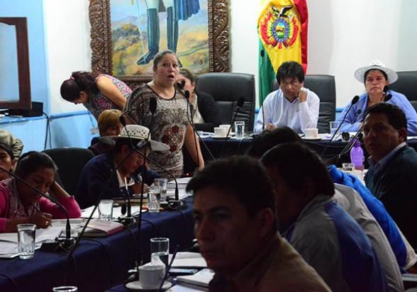 Exposición de la Interventora del Fondo Indígena, ayer en la ALD de Cochabamba. - Daniel  James Los Tiempos