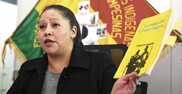La Interventora del Fondo criticó la investigación que hizo Diego Ayo