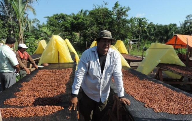 Comunidades campesinas enfrentan los efectos de El Niño con innovaciones tecnológicas