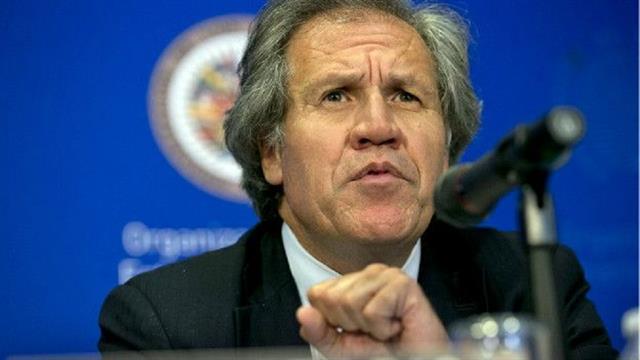 Luis Almagro: el secretario general de la OEA negó que haya una acusación