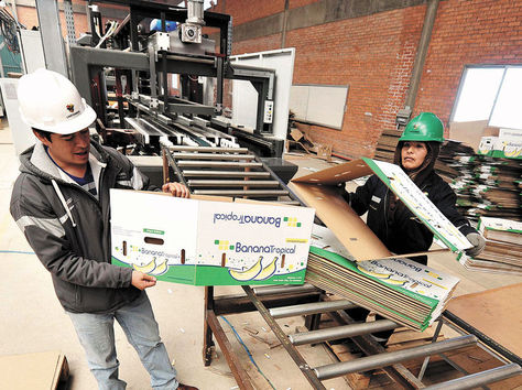 Un obrero en la planta de Cartonbol. Foto: La Razón-archivo