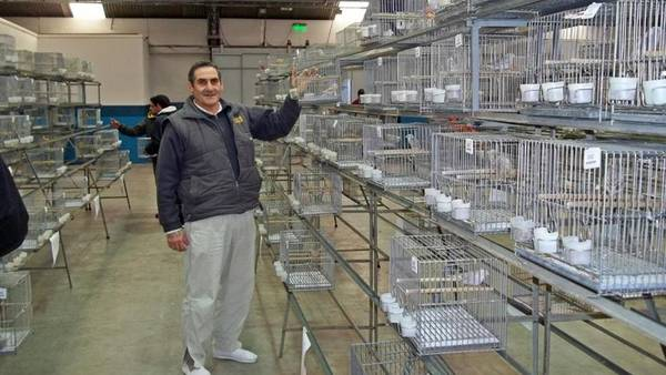 El asesino. Roberto Daniel Vecino (57), con su pasión: los canarios.
