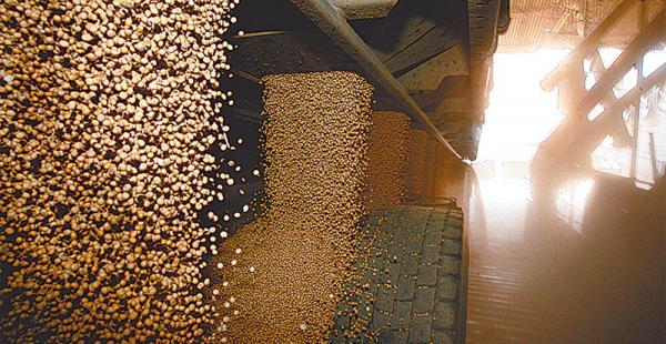 Pese a la sequía, el sector productor oleaginoso garantiza la provisión de grano para el consumo interno