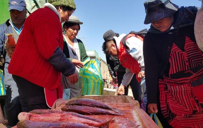 El sabor del sábalo de Villamontes llega a El Alto y genera una cadena económica en invierno