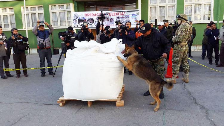 Un can antidroga sobre una bolsa de ulexita donde se encontraba la droga